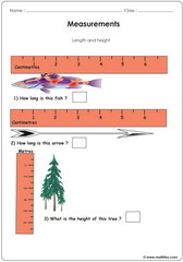 Measurements using tapes rulers